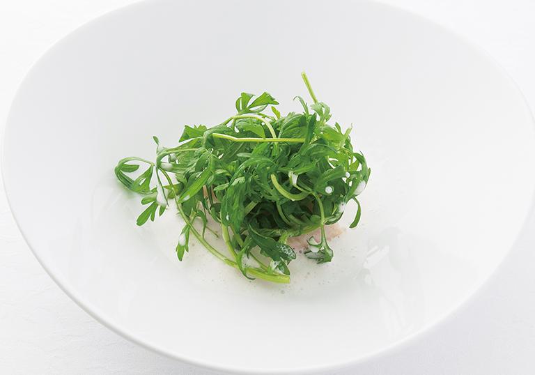 ⑤アイナメのヴァプール あさりのジュース クレソン(フランス種)のサラダ